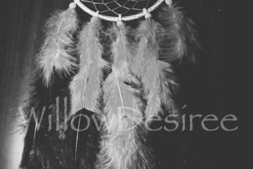 Dreamcatcher by Willow Doll